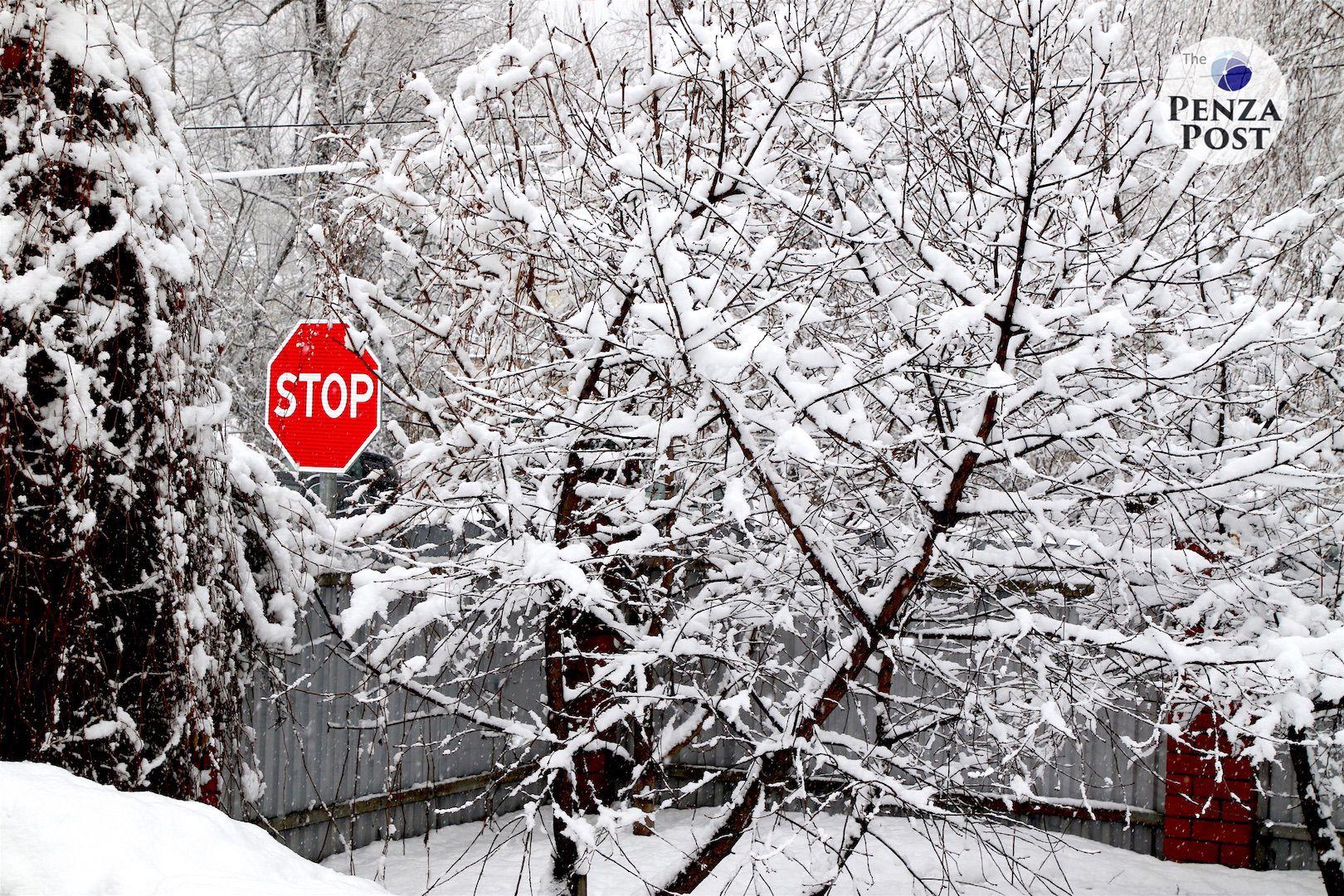 Россиян предупредили об аномально холодной зиме