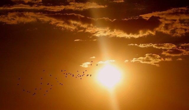В Пензенской области потеплеет до +34 градусов