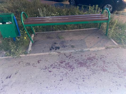 В Заречном произошло убийство из-за собаки