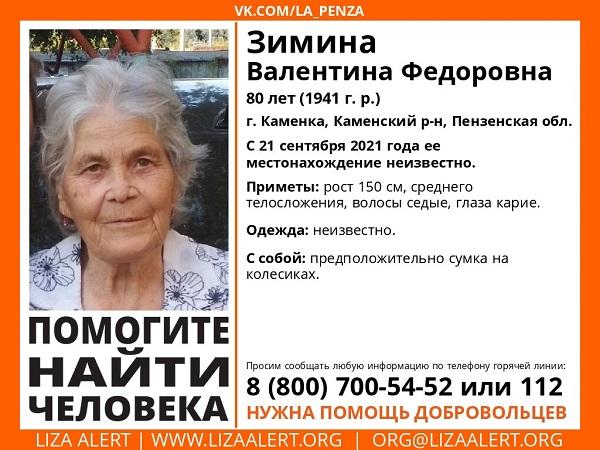 В Пензенской области ищут 80-летнюю жительницу Каменки