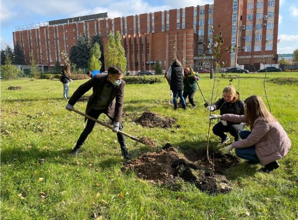 До середины октября в Пензе собираются высадить 1 тыс. деревьев