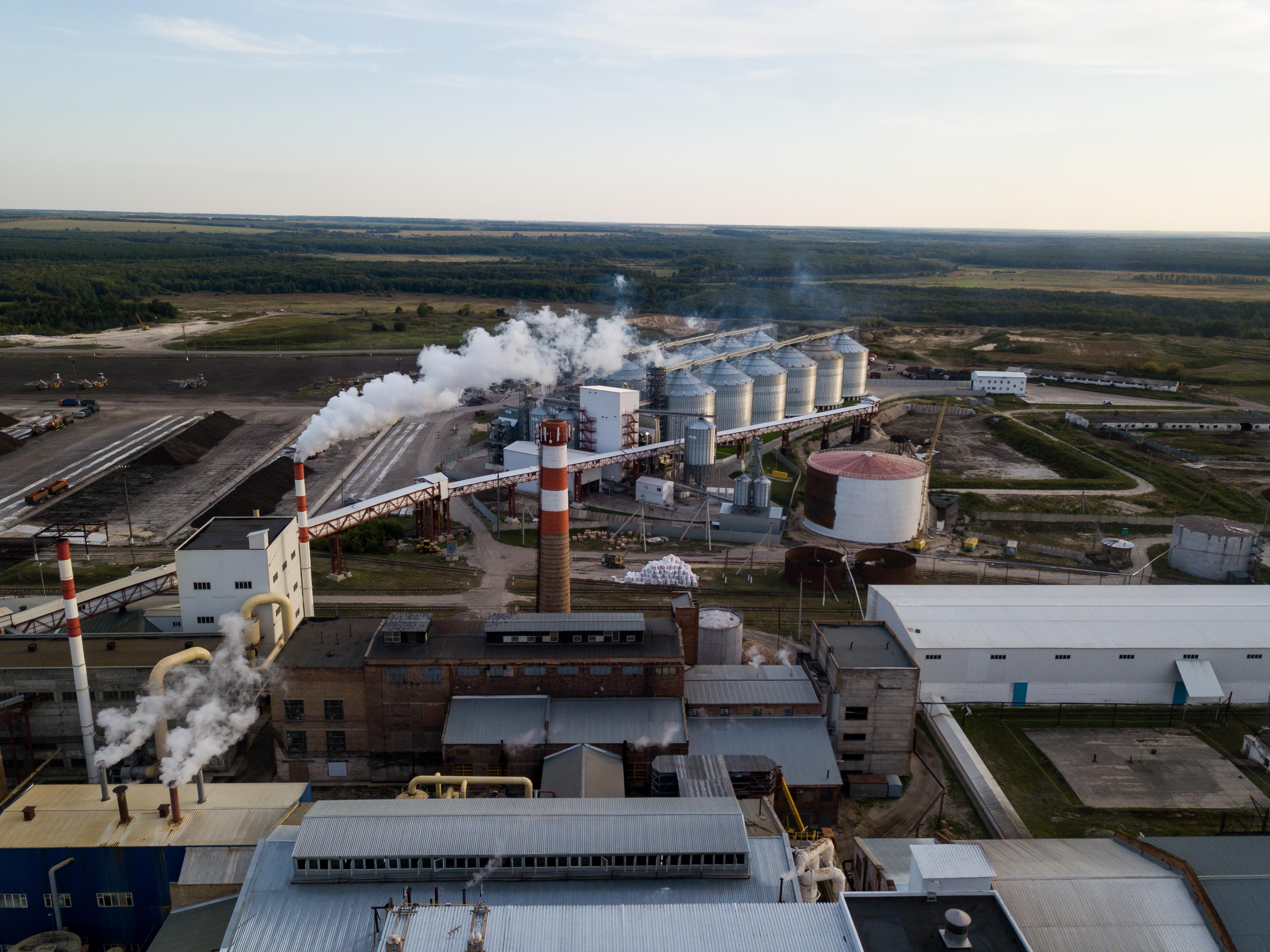 Экспорт агропромышленного комплекса Пензенской области насчитывает 78 млн долларов