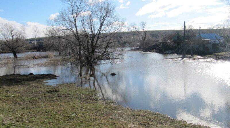 В Вадинске будет расчищено русло реки Керенки