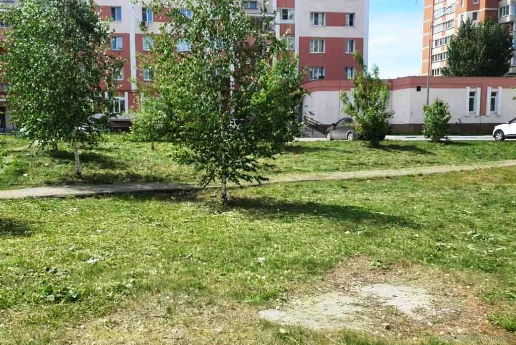 В Пензе в Арбеково и на Севере ликвидировали стихийные свалки