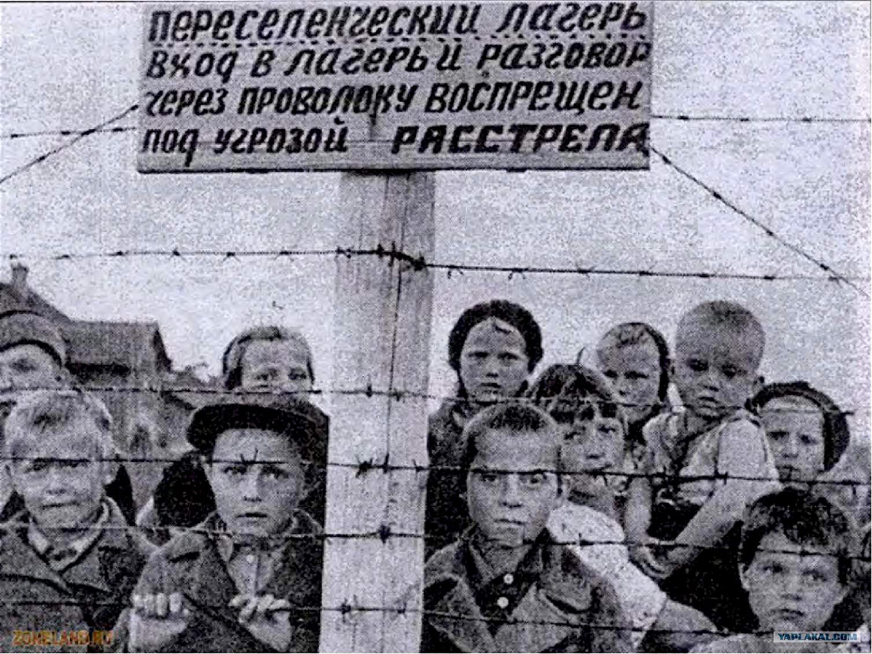 Фото дети в концлагере саласпилс